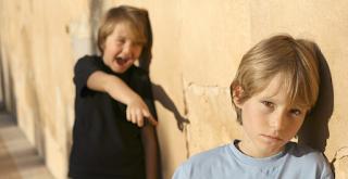 Το bullying μεταξύ αδερφών η πιο συνηθισμένη μορφή ενδοοικογενειακής βίας σύμφωνα με νέα έρευνα