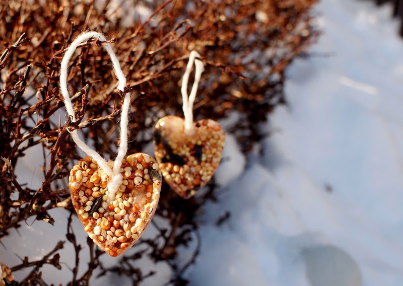 DIY ice bird feeders dangling from bush