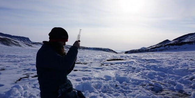 Co-author I. Altshuler sampling permafrost terrain near the McGill Arctic research station, Canadian high Arctic. Dr Jacqueline Goordial