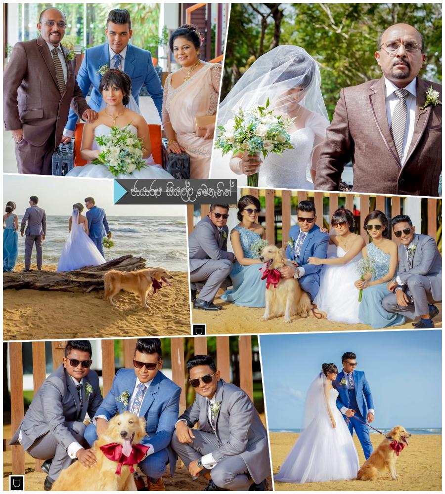 http://www.gallery.gossiplankanews.com/wedding/kelum-shrimal-daughter-paramis-wedding.html