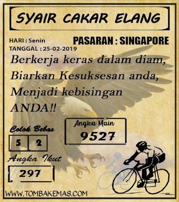 SYAIR SINGAPORE,25-02-2019