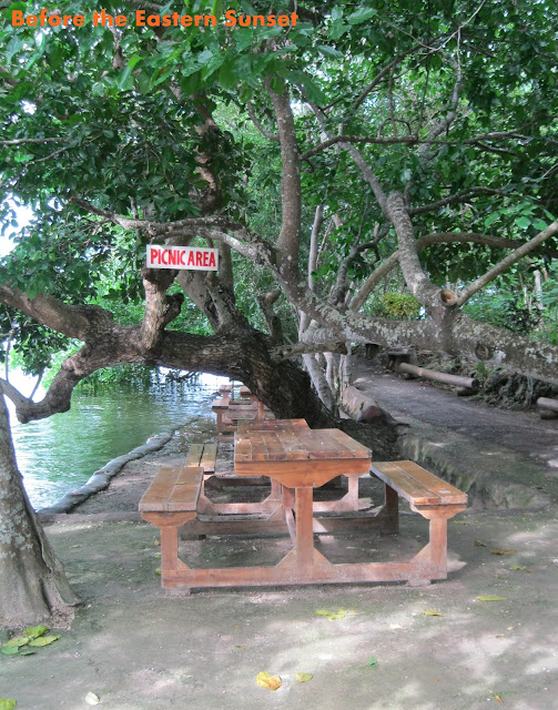 Camotes Island - benches at Lake Danao Park