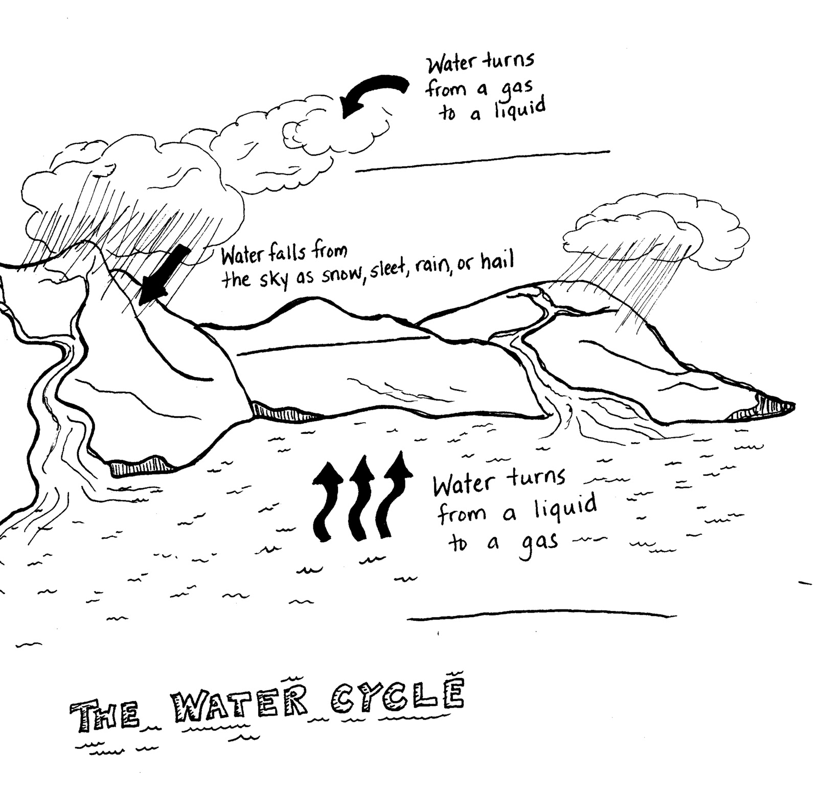 Water Cycle Diagram With Questions Control Wiring Diagrams Fourth Grade Reading Notes Understanding Resources