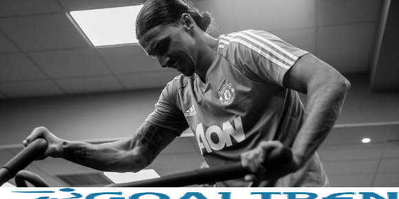 Zlatan Ibrahimovic is expected to play again