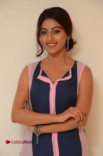Anu Emmanuel Pictures in Long Dress at Majnu Audio Success Meet