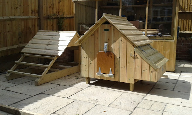Activity Centre Maggies Six chicken Coop