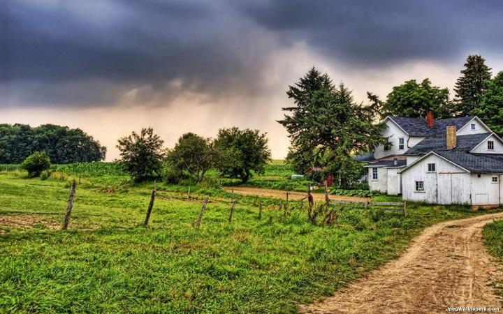 çiftlik resimleri