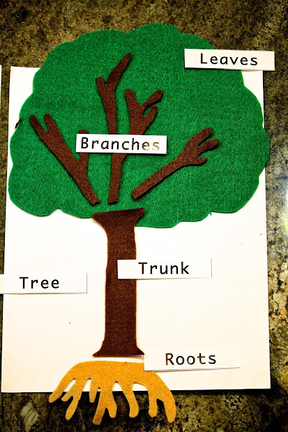 Preschool Tree Parts