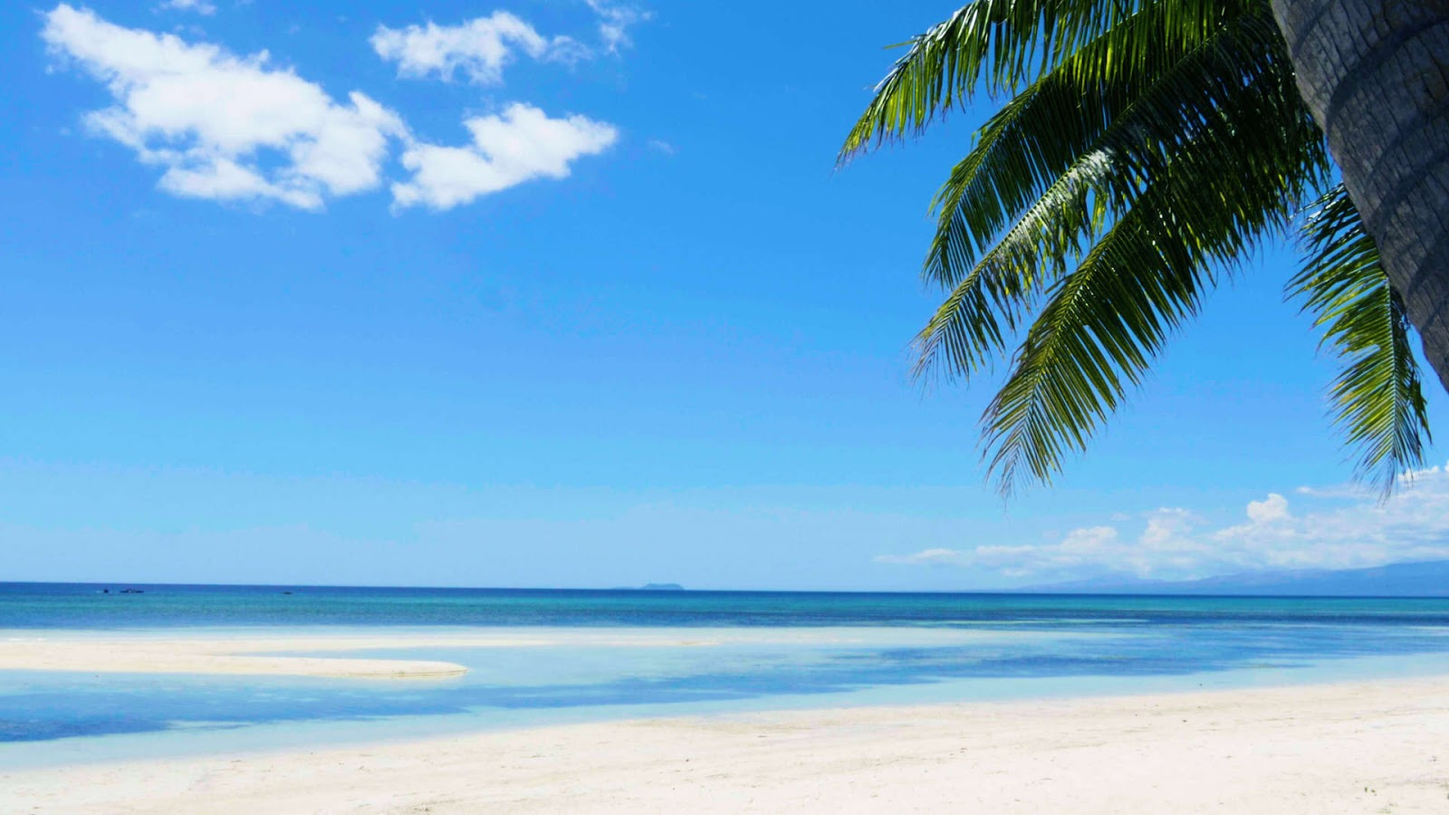 Free Tropical Beach Wallpapers For Desktop Enam Wallpaper