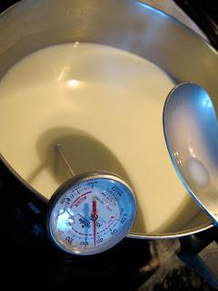 goat milk mozzarella