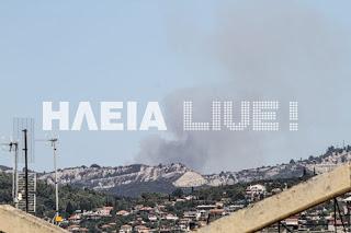 Μεγάλη πυρκαγιά ξέσπασε στο Κρυονέρι Αμαλιάδας