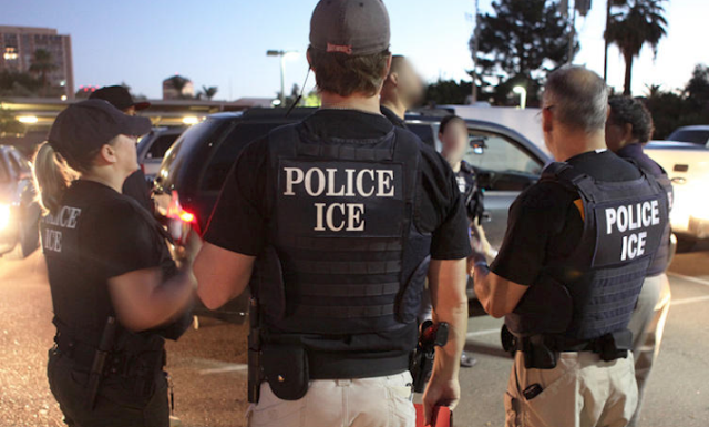 Dem pollster: Democrats should not call for abolishing ICE ahead of November