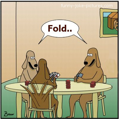 Poker Card Dogs Funny Cartoon Image