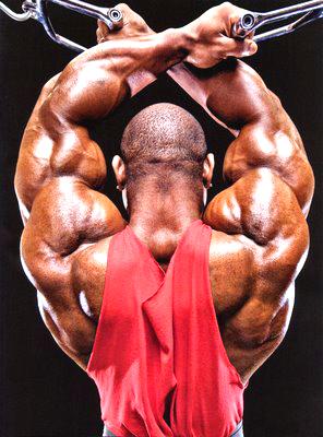 endomorph bodybuilder - photo #21
