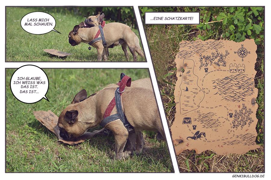Hundeblog Genki Bulldog Monatspfoto August Schatzsuche Fotostory