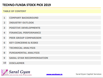 Multibagger Stock 2019 Report