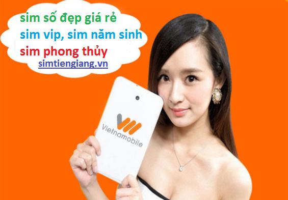 mua-sim-so-dep-gia-re-tai-Tien-Giang