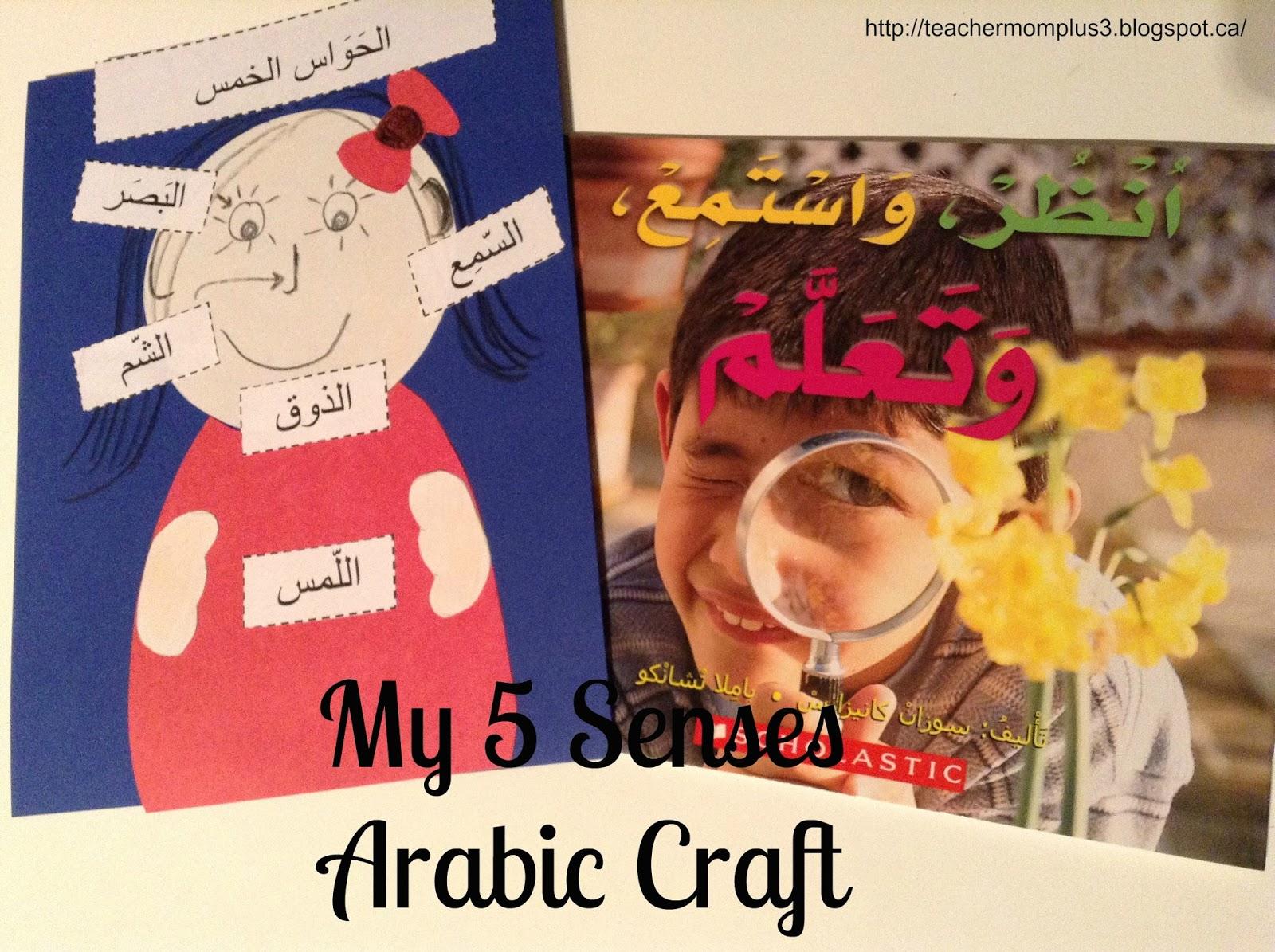 Teachermomplus3 My Five Senses Arabic Craft
