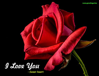 red rose Sweet heart I love you image
