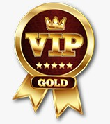VIP Gold Space