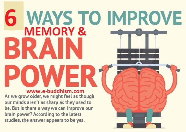 6 Habits To Largely Improve Your Memory And Brain Power.