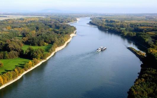 WWF: Ο ποταμός Δούναβης έχασε το 60% των πληθυσμών των ψαριών τα τελευταία 20 χρόνια
