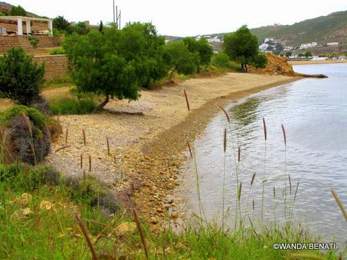 La spiaggia di Plakì in primavera, a Patmos