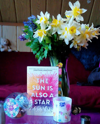 Cover von The sun is also a star by Nicola Yoon