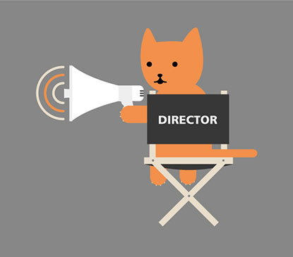 Cat in director's chair