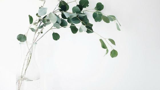 ¿Qué es el minimalismo?
