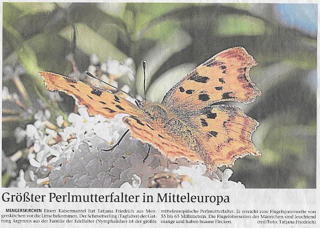 Tageszeitung Weilburg-Tatjana Friedrich