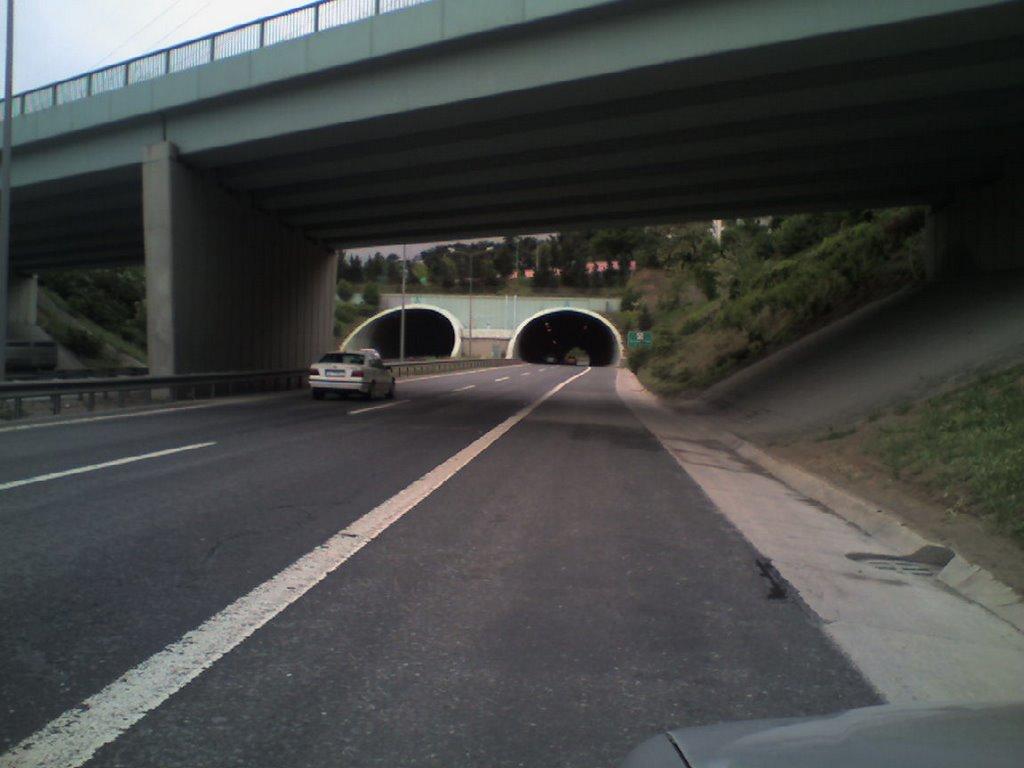 Şile Otoyolu Üzerindeki Tantavi Tüneli'ne Ses Bariyeri Talebi