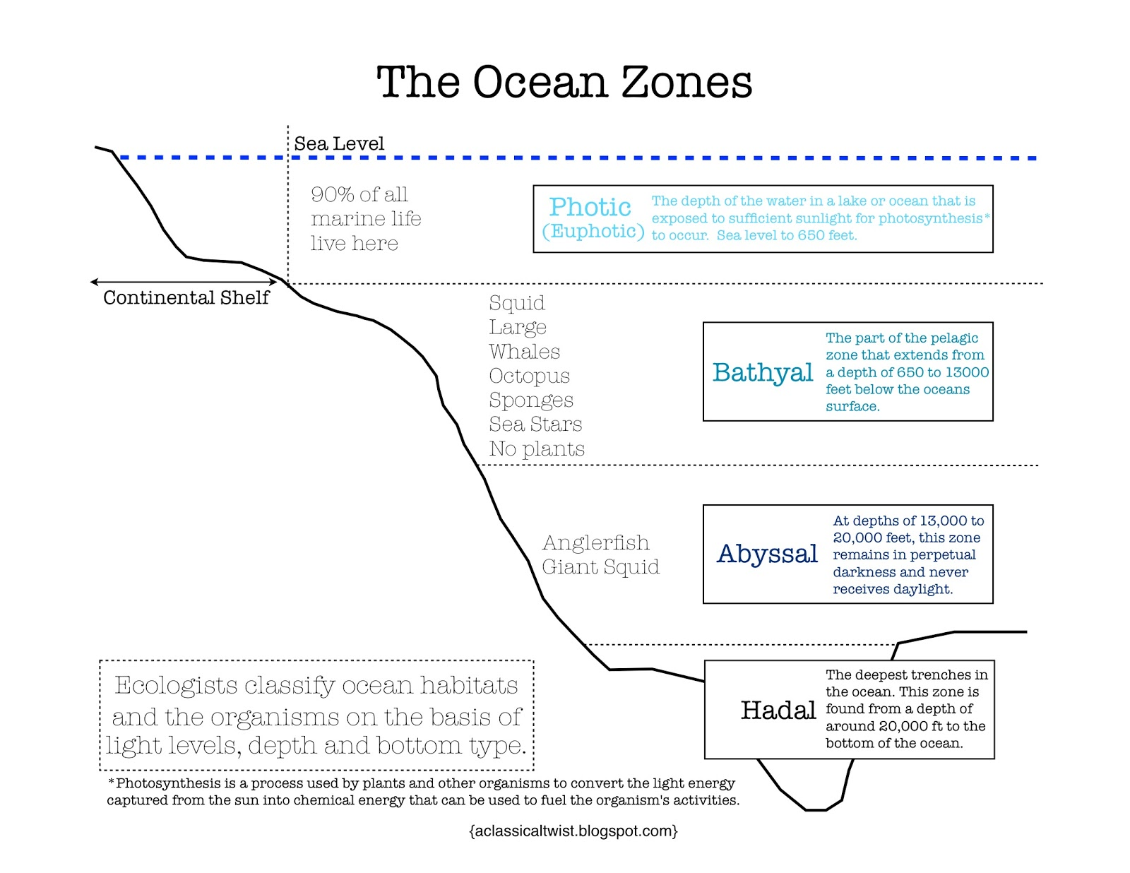 homeschooling with a classical twist ocean zones printable. Black Bedroom Furniture Sets. Home Design Ideas