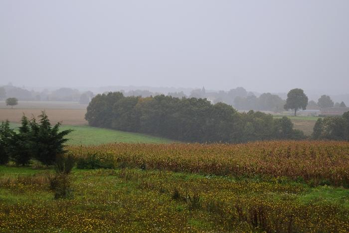 Campagne en Puisaye Yonne Fontenouilles