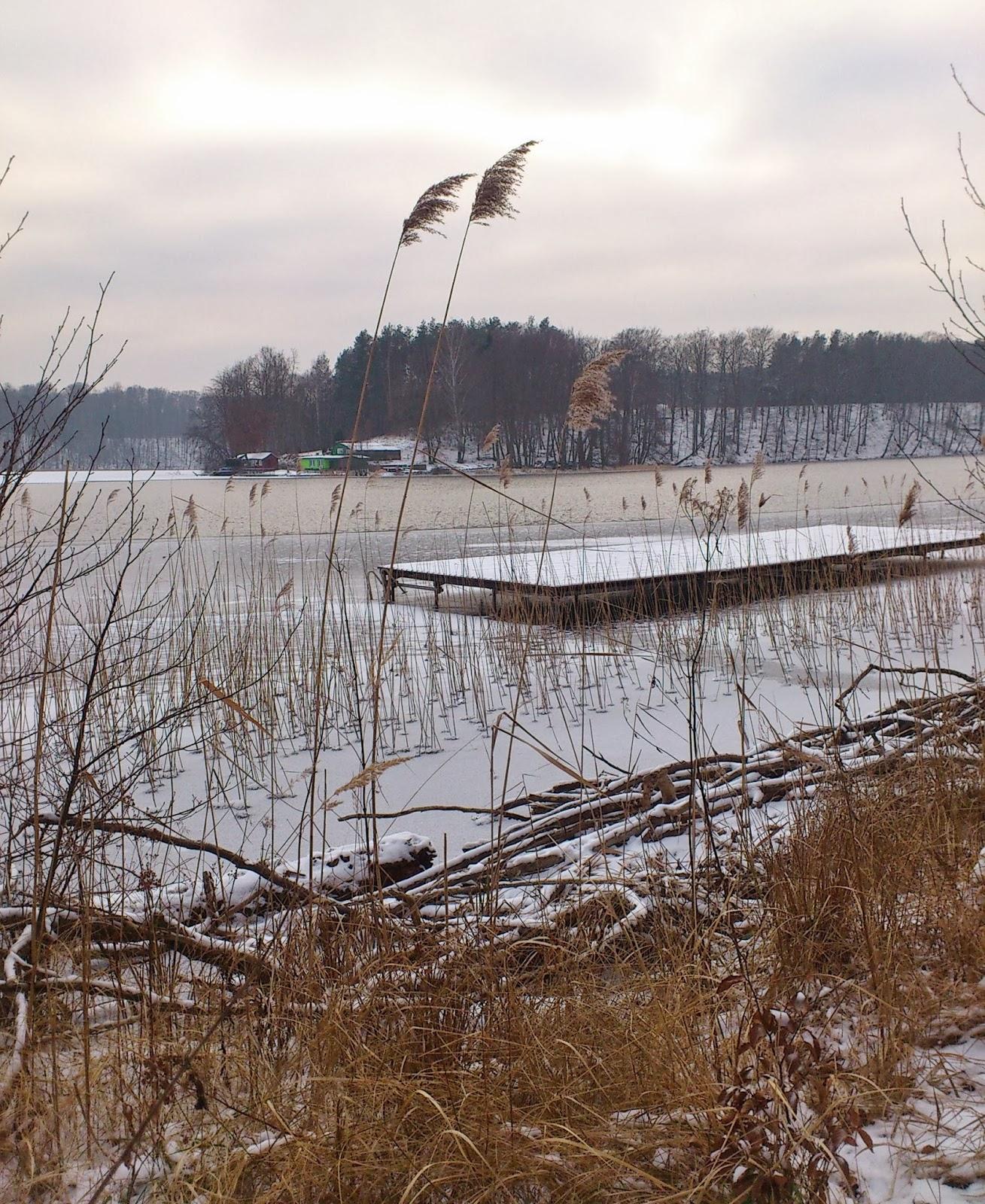 Winter Liepnitzsee