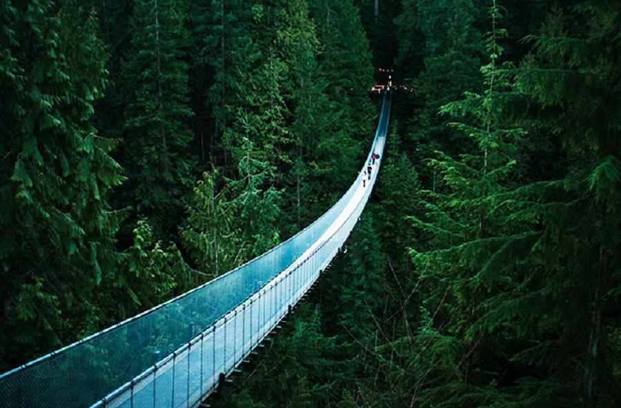 Ponte Suspensa de Capilano principais pontos turísticos do Canadá
