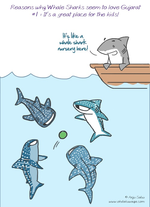 """Oh, Dakuwaqa!"" - The Shark comics and cartoons ... Basking Shark Vs Whale Shark"