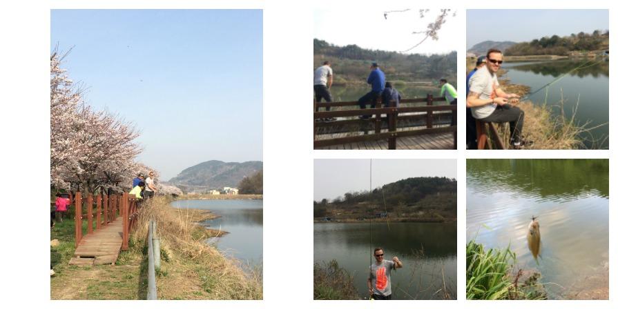 Ungcheon