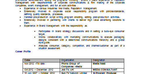 Media Professional Resume Format