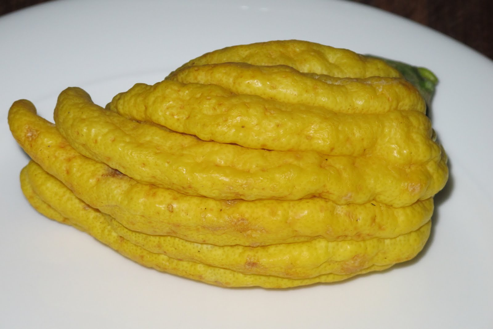 Ręka Buddy - odmiana owocu cytronu