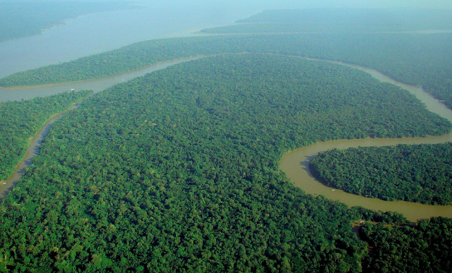 Gambar Amazon, Amerika