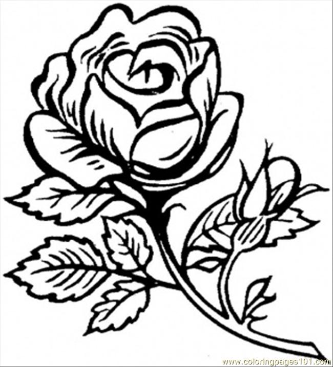beautiful flower coloring pages flower coloring page