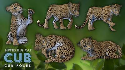 HW3D Cub for HW3D Big Cat