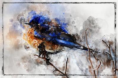 https://2.bp.blogspot.com/-GmPSzLPlHqo/W1N1DGenU3I/AAAAAAABMoY/A77TYEuBsGUdSkt1PkvmetTudKmdWVvhQCLcBGAs/s400/BlueBirdWatercolor_TlcCreations.jpg