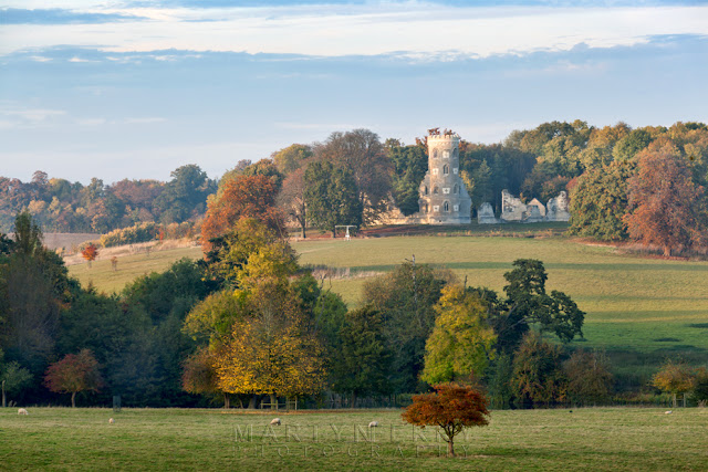 Trees in autumn and Folly on the Wimpole Estate