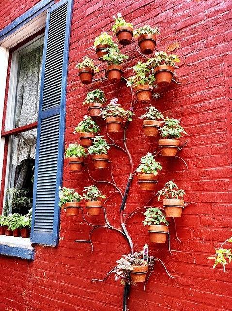 Home Sweet Home Space Saving Garden Ideas