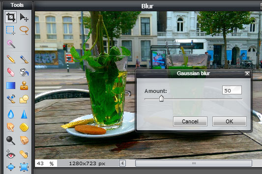 Easy Ways to Blur the Background of a Digital Image
