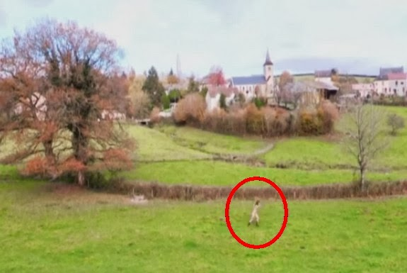 A naked Doria Tillier is seen running around a lush green field wearing just her boots and socks