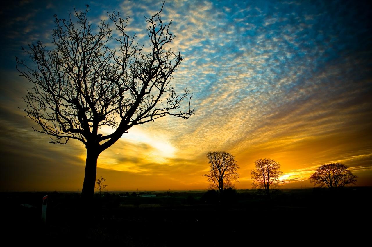 Galaxy Pics: free desktop wallpaper nature
