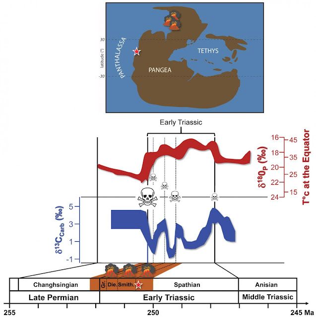 Fossils show quick rebound of life after the 'Great Dying'